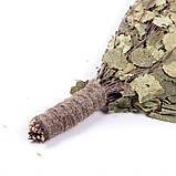 Веник березовый в упаковке, Saunapro, фото 3