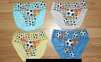 Трусы для мальчика 2-5 лет футбол оптом