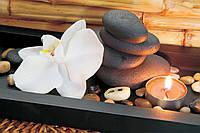 Фотообои 3D орхидея 254x184 см Камни и свеча (050.20341)