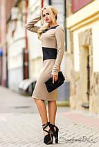 Элегантное двухцветное платье из трикотажа алекси (0985-0987 svt), фото 2