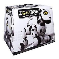 Собака робот ZOOMER, фото 3
