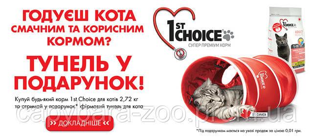 Акція 1st Choice Тунель у подарунок. Дізнайтеся подробиці!