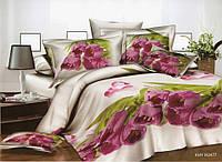 3D Полуторное постельное белье Amika сиреневые тюльпаны