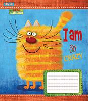 Тетрадь в линию 12 л 1 Вересня А5 Crazy kitten микс 4 обложки (761769)
