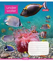 А5/18 лин. 1В Under Water, тетрадь ученич.