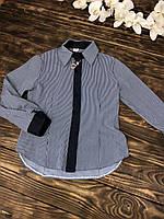 Блузка длинный рукав тонкая полоска
