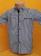 Рубашки подростковые приталенные с коротким рукавом (6-11 лет) ШКОЛА  производство Турции