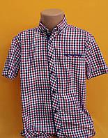 Рубашки подростковые приталенные с коротким рукавом (11-15 лет) ШКОЛА  производство Турции
