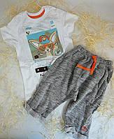 Комплект для мальчика Лис Белый/серый Трикотаж КС545 Бэмби Украина 128