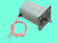 Электродвигатель ДШИ-200-3-3 шаговый