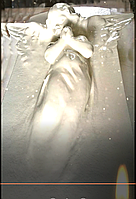 Гибкая форма СТЕЛЛА_АНГЕЛ, фото 1
