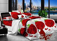 Комплект постельного белья ранфорс Тм Таg R519