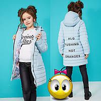 Куртка для дівчинки Весна-Осінь з принтом і капюшоном NW Поллі 19893 Блакитний, фото 1