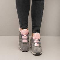 Кроссовки замшевые серые 8392, фото 3