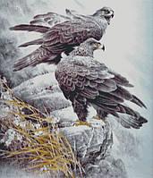 """Схема для вышивания """"Птицы гор"""""""