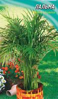 Семена пальма