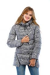 Стильная зимняя женская короткая куртка в 2х цветах К-35
