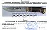 Нож охотничий Волк Подарочный из рисунком производство Украины, фото 6