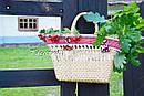 Плетеная сумочка ручной работы декорированная в этно стиле, фото 2