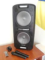 Портативная акустика Euromax EU2002 2 мик, фото 1