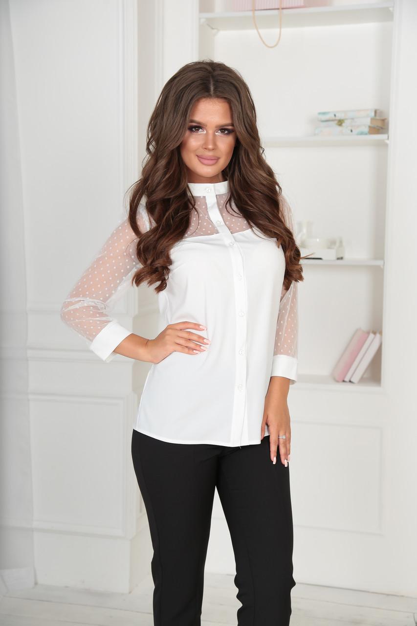 Блуза кико1095
