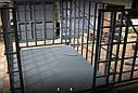 Весы для взвешивания скота ВН-600-4 Промприбор., фото 2