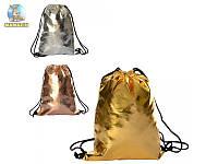 Сумка-рюкзак для обуви золото/серебро