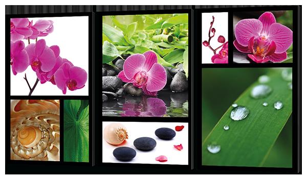 Модульная картина  коллаж цветов