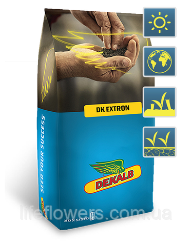 DK Extron (ДК Экстрон), фото 2
