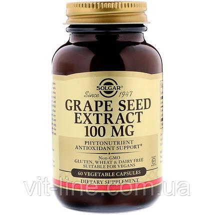 Solgar, Экстракт виноградной косточки, 100 мг, 60 вегетарианских капсул, фото 2