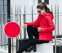 Женская модная весенняя курточка .Огромный выбор цветов! Модель 1941, фото 3