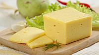 Закваска для сыра Гауда (голландский) (3шт. х 3 литра молока)