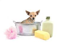 Косметика для кошек и собак