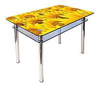 Стол обеденный стеклянный КС-1 90х60 (фотопечать №20) (Антоник ТМ)