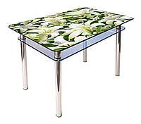 Стол обеденный стеклянный КС-1 90х60 (фотопечать №33) (Антоник ТМ)