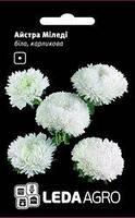 Семена астры Миледи, 0,2 гр., карликовая, белая