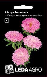 Семена астры Аполлония, 0,2 гр., серебристо-розовая, хризантемовидная