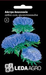 Семена астры Аполлония, 0,2 гр., серебристо-синяя, хризантемовидная