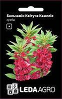 Семена бальзамина Цветущая Камелия, 0,5 гр., махровый, смесь