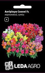 Семена антиринума Снеппи F1, 10 сем., карликовый, смесь