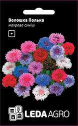 Семена василька Полька, 0,5 гр., махровый