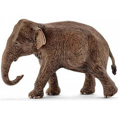 Азиатский слон (самка) - игрушка-фигурка, Schleich 14753