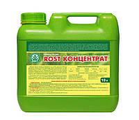 Рост-Форте насіння (10л), комплексное органо-минеральное  удобрение на основе гумата калия
