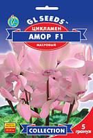 Цикламен Амор F1 махровый крупноцветковый многолетний срезочный сорт с нежным ароматом, упаковка 5 гранул