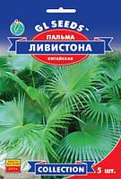 Пальма Ливистона китайская эффективная быстрорастущая веерная высотой 2,5-3 м, упаковка 5 шт