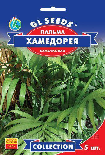 Пальма бамбуковая Хамедория изящная непрехотливая высотой 1,5-2 м, упаковка 5 шт