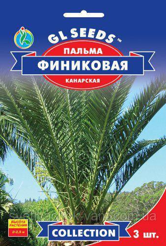Пальма Финиковая Канарская очень привлекательная листья длинной до 1,5 м высота 2-2,5 м, упаковка 3 шт
