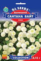 Матрикария Сантана Вайт белый обильно цветущий компактный однолетник, упаковка 0,15 г