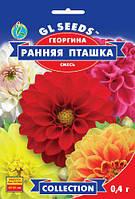 Георгина Ранняя Пташка компактный красиво и обильно цветущий суперранний сорт, упаковка 0,4 г