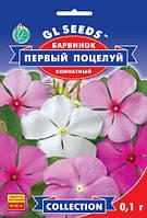 Барвинок Первый Поцелуй комнатный популярный вечнозеленый цветущий кустарник , упаковка 0,1 г